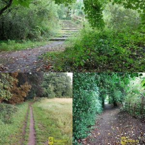 Steps and paths in Aspley Guise